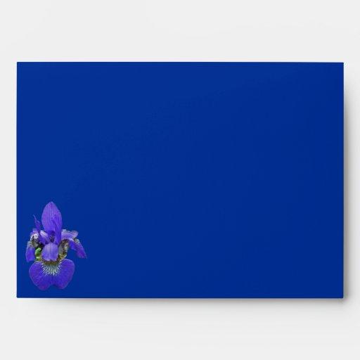 Sobre azul siberiano del iris
