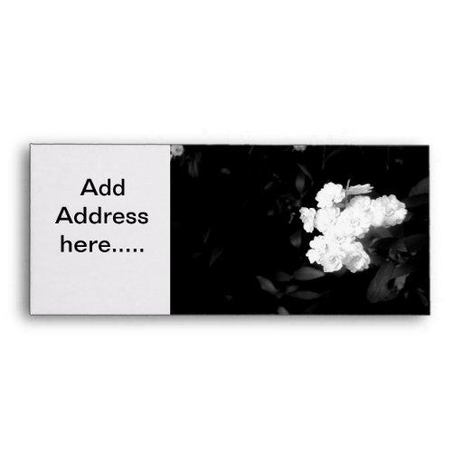Sobre blanco y negro de la flor