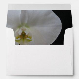 Sobre de encargo A7 -- Orquídeas blancas