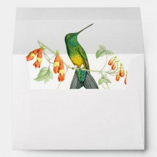 Sobre de los colibríes