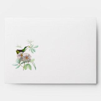 Sobre del colibrí
