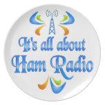 Sobre el equipo de radio-aficionado platos para fiestas