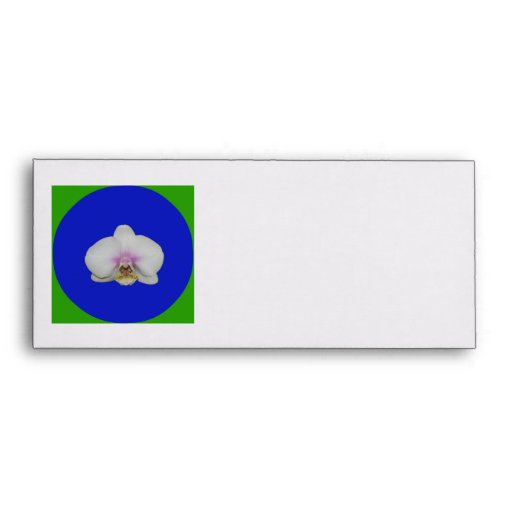 Sobre, flor de la orquídea de polilla en el círcul sobre