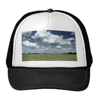 Sobre los campos vamos gorra