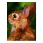 Sobre mi postal del conejo del hombro