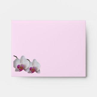 Sobre rosado de la orquídea