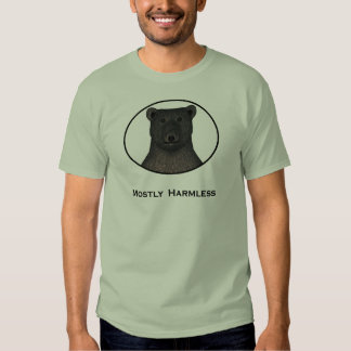 Sobre todo camiseta (ligera) inofensiva playera