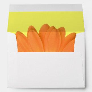 Sobres anaranjados y amarillos de la margarita de