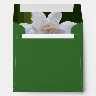 Sobres - Gardenia en rayas