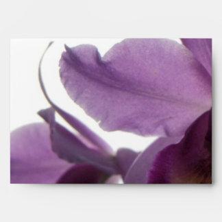 Sobres púrpuras elegantes de las orquídeas
