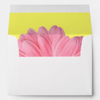 Sobres rosados y amarillos de la margarita de Gerb