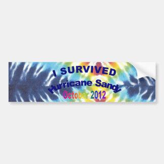 Sobreviví a la pegatina para el parachoques de San Etiqueta De Parachoque