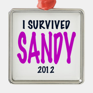 SOBREVIVÍ A SANDY 2012, charteuse, superviviente Adorno Navideño Cuadrado De Metal