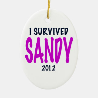 SOBREVIVÍ A SANDY 2012, charteuse, superviviente Adorno Navideño Ovalado De Cerámica