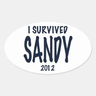 Sobreviví a Sandy 2012, huracán Sandy Colcomanias De Oval Personalizadas