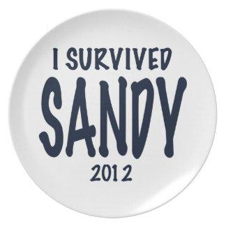 Sobreviví a Sandy 2012, huracán Sandy Platos Para Fiestas