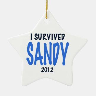 SOBREVIVÍ A SANDY 2012, lt. azul, GIF del Adorno Navideño De Cerámica En Forma De Estrella