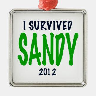 SOBREVIVÍ A SANDY 2012, verde, regalos de Sandy Adorno Navideño Cuadrado De Metal