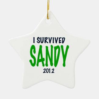 SOBREVIVÍ A SANDY 2012, verde, regalos de Sandy Adorno Navideño De Cerámica En Forma De Estrella