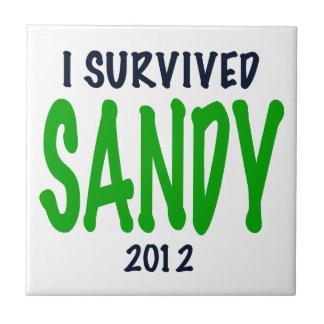 SOBREVIVÍ A SANDY 2012 verde regalos de Sandy de Tejas Cerámicas
