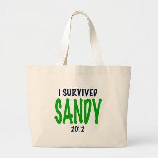 SOBREVIVÍ A SANDY 2012, verde, regalos de Sandy de Bolsa De Mano