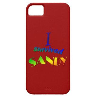 Sobreviví a Sandy 2 iPhone 5 Fundas