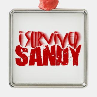 sobreviví a SANDY Adorno Navideño Cuadrado De Metal