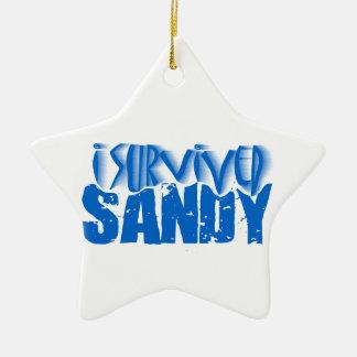 sobreviví a SANDY Adorno Navideño De Cerámica En Forma De Estrella
