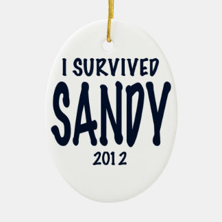 Sobreviví a Sandy Adorno Navideño Ovalado De Cerámica