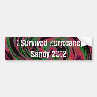 Sobreviví a Sandy Pegatina Para Auto