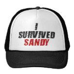 Sobreviví a Sandy - gorra de Sandy del huracán (el