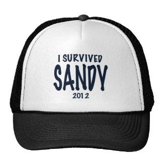 Sobreviví a Sandy Gorras