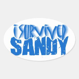 sobreviví a SANDY Pegatina Ovalada