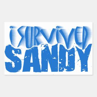 sobreviví a SANDY Pegatina Rectangular
