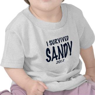 Sobreviví a Sandy Camisetas