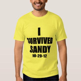 Sobreviví a Sandy Playeras