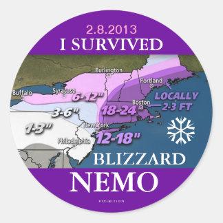 Sobreviví al pegatina 2 de Nemo de la ventisca
