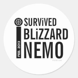 Sobreviví al pegatina 4 de Nemo de la ventisca