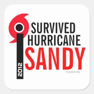 Sobreviví al pegatina 4 de Sandy del huracán