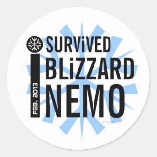 Sobreviví al pegatina 5 de Nemo de la ventisca