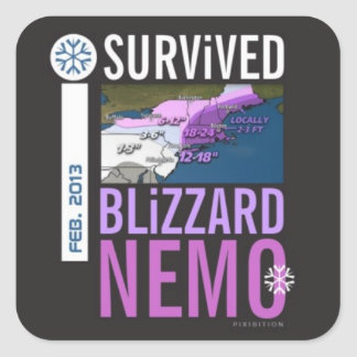 Sobreviví al pegatina 8 de Nemo de la ventisca