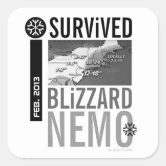 Sobreviví al pegatina 9 de Nemo de la ventisca