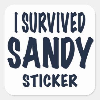 """""""SOBREVIVÍ AL PEGATINA DE SANDY"""". Regalos de Sandy"""