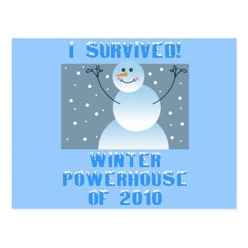 ¡Sobreviví! Central eléctrica del invierno de 2010 Postales
