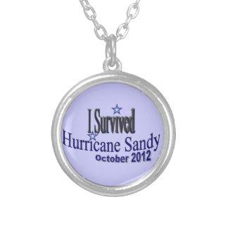 Sobreviví collar de Sandy del huracán