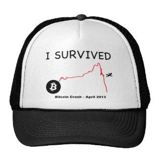 Sobreviví: Desplome de Bitcoin - abril de 2013 Gorros Bordados