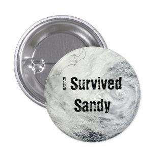 Sobreviví el botón de Sandy Pin Redondo De 1 Pulgada
