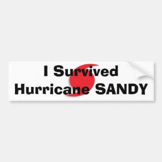 Sobreviví el bumpersticker de SANDY del huracán Pegatina Para Auto