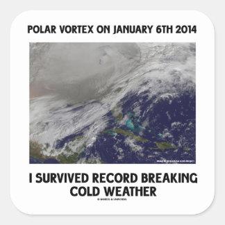 Sobreviví el expediente que rompía el tiempo frío pegatina cuadrada