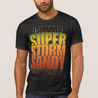 Sobreviví el huracán estupendo Sandy de la Poleras